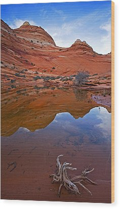 Sandstone Pools Wood Print by Mike  Dawson