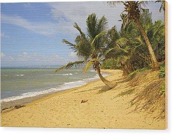 Sandy Beach II Wood Print