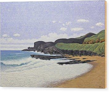 Sandy Beach Oahu Wood Print by Norman Engel