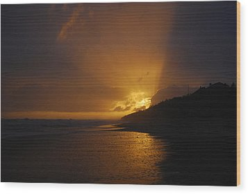 Sandy Leaving Montauk Wood Print by Kelly Nickels