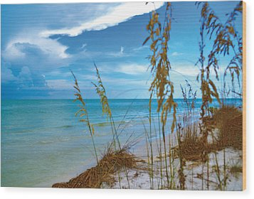 Wood Print featuring the photograph Sanibel Sea Oats by Timothy Lowry