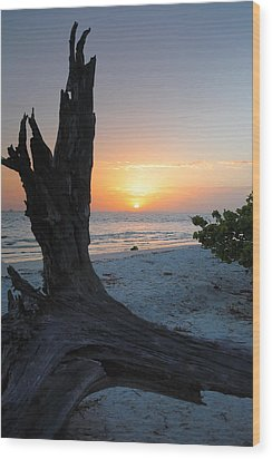 Sanibel Sunrise II Wood Print by Steven Ainsworth