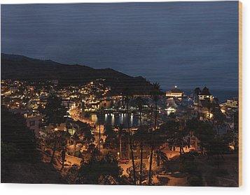 Santa Catalina Island Nightscape Wood Print by Angela A Stanton