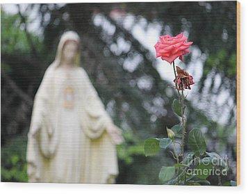 Santa Catalina Rose Wood Print by Wilko Van de Kamp