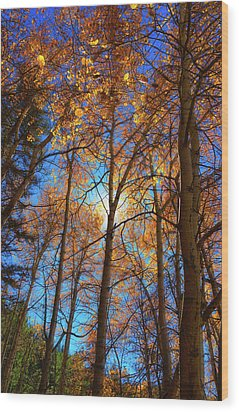 Wood Print featuring the photograph Santa Fe Beauty II by Stephen Anderson