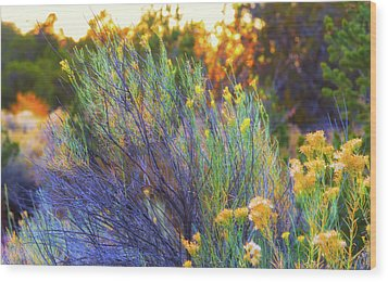 Wood Print featuring the photograph Santa Fe Beauty by Stephen Anderson