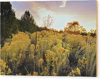 Wood Print featuring the photograph Santa Fe Magic by Stephen Anderson