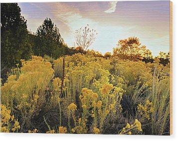 Santa Fe Magic Wood Print by Stephen Anderson