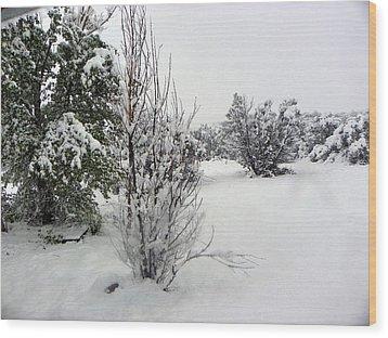 Santa Fe Snowstorm 2017 Wood Print