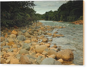 Santa Maria River Wood Print by Iris Greenwell