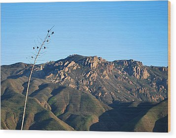 Wood Print featuring the photograph Santa Monica Mountains View  by Matt Harang
