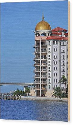 Wood Print featuring the photograph Sarasota Life 02 by John Knapko