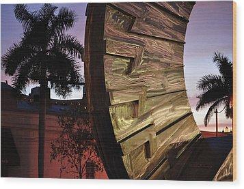 Wood Print featuring the photograph Sarasota Nights by John Knapko