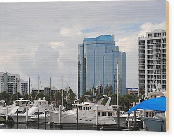Sarasota Wood Print by Steven Scott