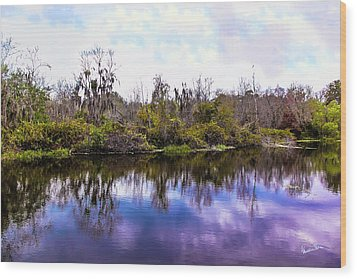 Wood Print featuring the photograph Sarasota Symphony  by Madeline Ellis