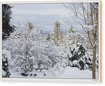 Wood Print featuring the photograph Saratoga Winter Scene by Lise Winne
