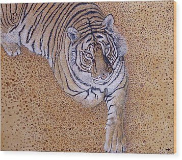 Wood Print featuring the painting Sasha by Tom Roderick