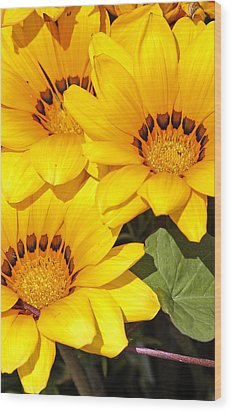 Wood Print featuring the photograph Satin Yellow Florals by E Faithe Lester