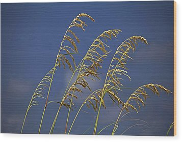 Wood Print featuring the photograph Saturday Sway by Michiale Schneider