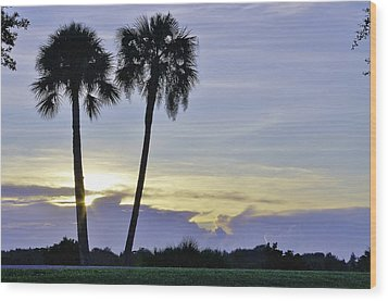 Savanna Sunrise Wood Print