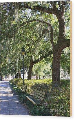 Savannah Benches Wood Print by Carol Groenen