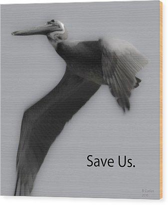 Save The Pelicans Wood Print by Betsy Knapp