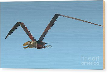 Wood Print featuring the photograph Saw Bird -raptor by Bill Thomson