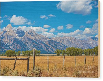 Wood Print featuring the photograph Saw Tooth Mountains  by Robert Pearson