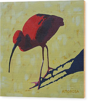Scarlet Ibis Wood Print by Donald Amorosa