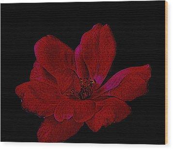 Scarlet Rose Wood Print by Marsha Heiken
