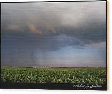 Scary Storm Wood Print by Melinda Swinford