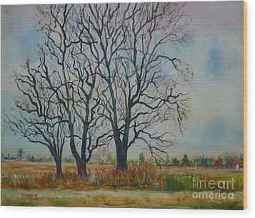 Scary Tree Wood Print by Joyce A Guariglia