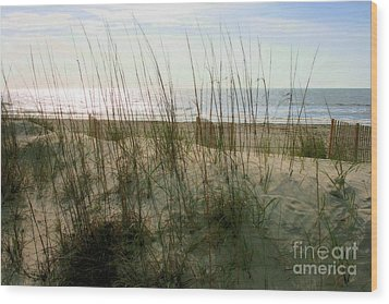 Scene From Hilton Head Island Wood Print
