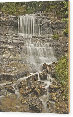Scenic Alger Falls  Wood Print by Michael Peychich