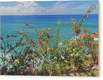 Scenic Coastal View With The Desecheo Island Wood Print by George Oze