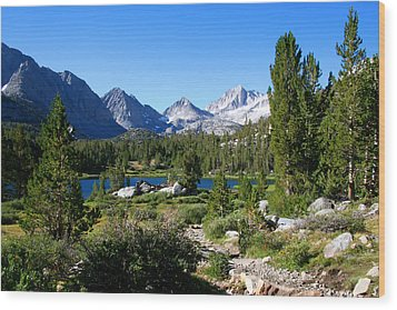 Scenic Mountain View Wood Print by Chris Brannen
