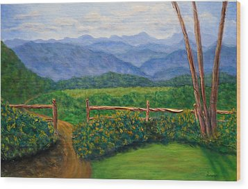 Scenic Overlook Wood Print by Sandy Hemmer