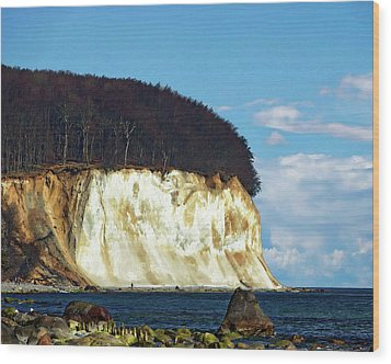 Scenic Rugen Island Wood Print by Anthony Dezenzio