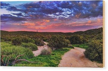 Wood Print featuring the photograph Scenic Trailhead by Anthony Citro