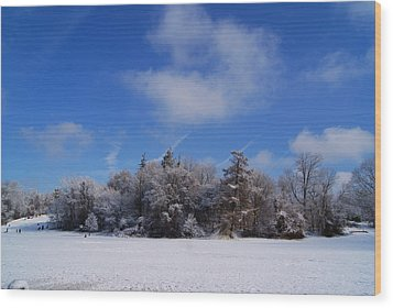 Scenic Winter Wood Print