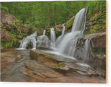Schalk's Falls Wood Print