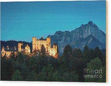Wood Print featuring the photograph Schloss Hohenschwangau by Brian Jannsen