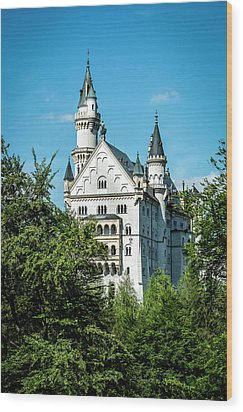 Wood Print featuring the photograph Schloss Neuschwantstein by David Morefield