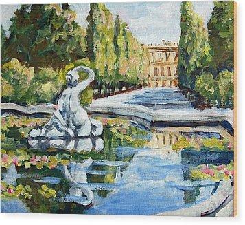 Schoenbrunn Palace Wood Print by Alexandra Maria Ethlyn Cheshire