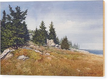 Schoodic Coast Wood Print