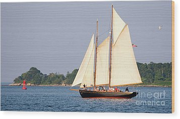 Schooner Cruise, Casco Bay, South Portland, Maine  -86696 Wood Print
