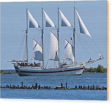 Schooner On Lake Michigan No. 1-2 Wood Print