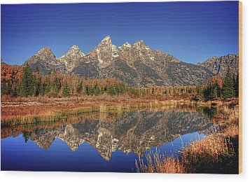 Schwabacher Landing Grand Teton National Park Wood Print by James Hammond