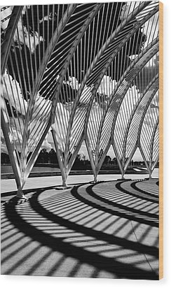 Wood Print featuring the photograph Scintilla Of Shadows by Mike Lang
