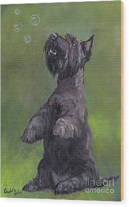 Scottie Likes Bubbles Wood Print by Charlotte Yealey